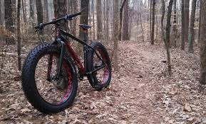 fatbike fatboy in woods